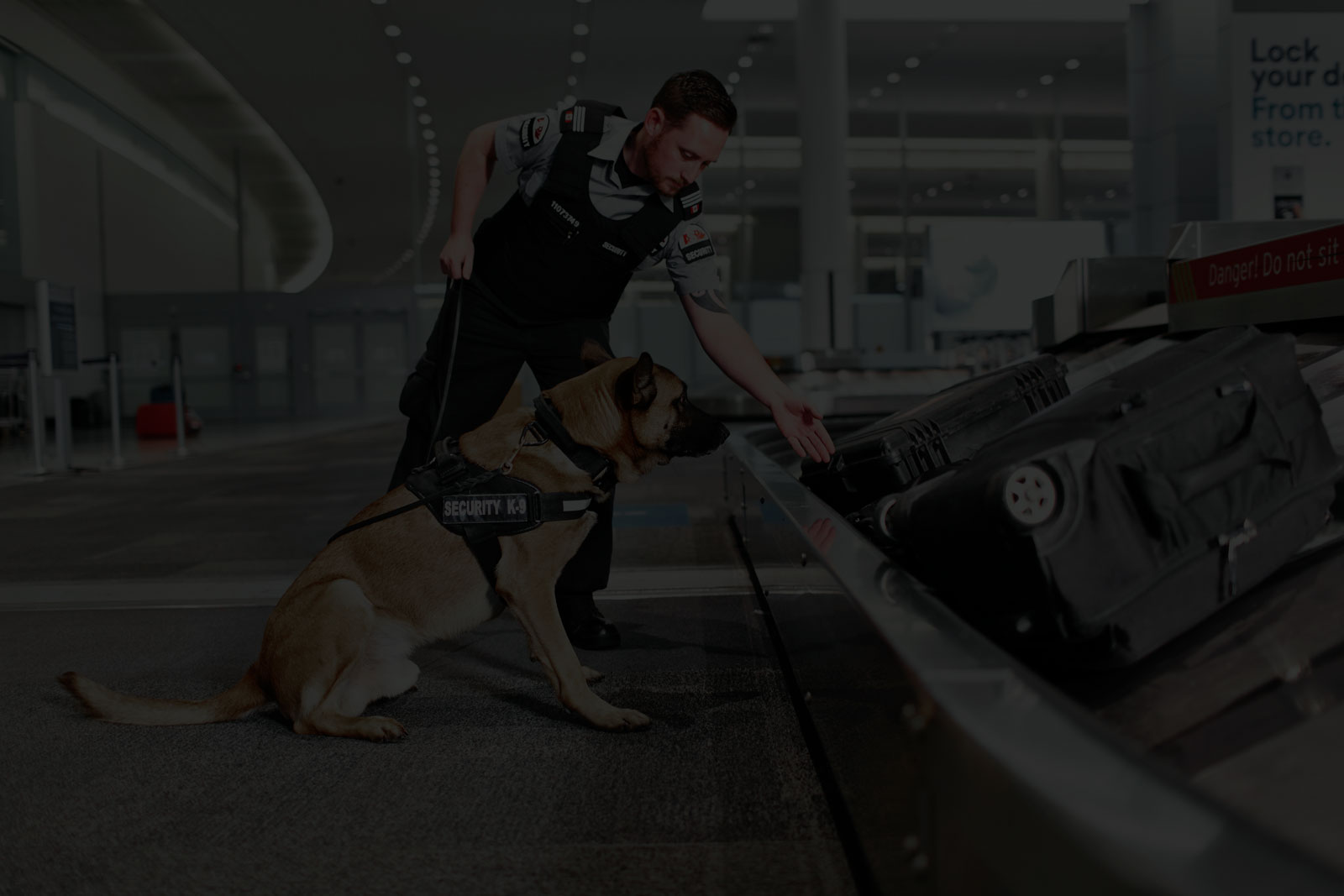 Canine Explosive Device Detection